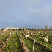 Château_Hourtin_Ducasse