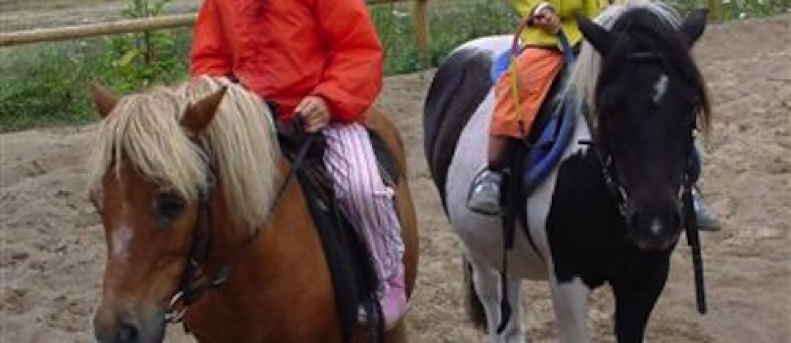 cavalerie poneys