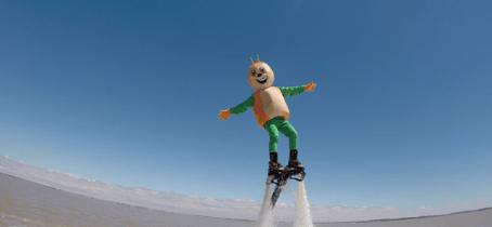 Jet Fly Evasion2