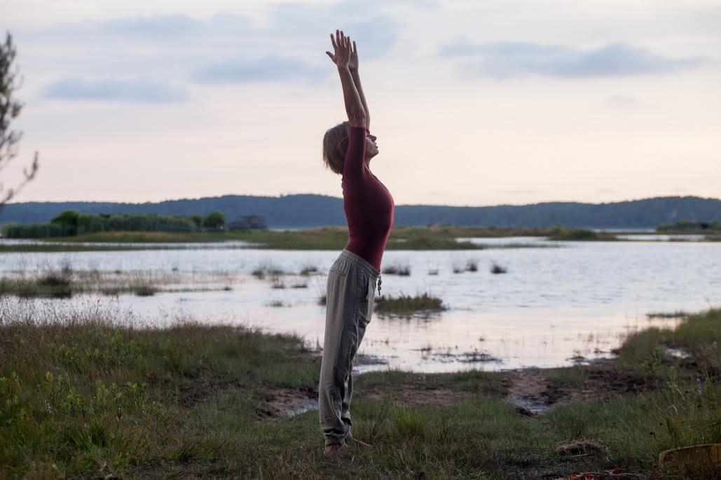 Wild & Zen Yoga 3