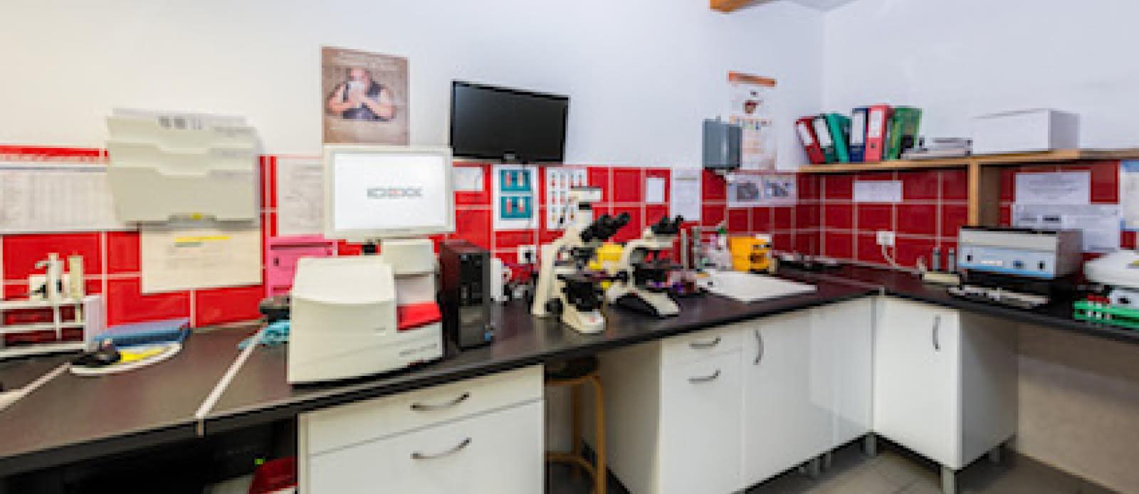 Clinique Vétérinaire5