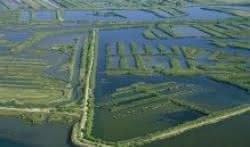 Vélodyssée - Bassin aux Landes - Domaine de Certes