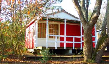 Camping Palace photo 7